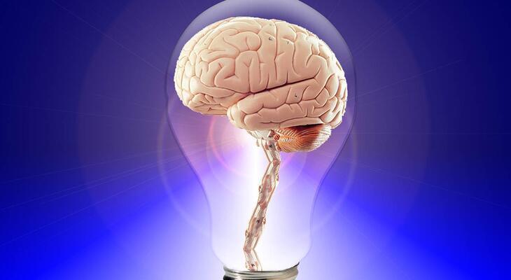 agyi fogyás