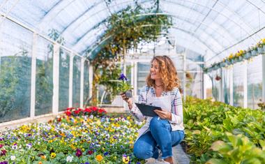 A növények egészségesebbé és boldogabbá tesznek bennünket