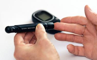 Cukorbeteg táplálkozás